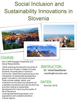 Social Inclusion and Sustainability Innovations in Slovenia